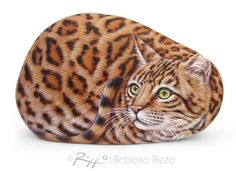 Incredibly Finely Detailed Bengal Cat Hand Painted on a Natural Sea Rock! Stone…