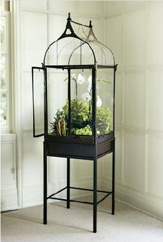 Modeled after the Wardian cases first built for growing ferns in the early 1800s, this terrarium creates a warm, humid environment that encourages plant growth, no matter what the temperature outside. The terrarium is crafted from wrought iron with a pointed arch and cutout trefoil motifs. The glass doors close to help seal in moisture. Really unique indoor piece. Found at Gump's also at Smith&Hawken. I like it's tall enough for the moth orchid!