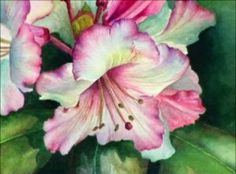 Secrets To Painting Vibrant Flowers in Watercolours