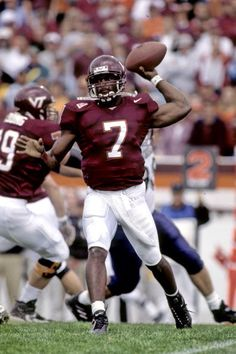 michael vick essay Tony taylor, also known as t, and michael vick, also known as ookic, decided to start a venture aimed at sponsoring american pit bull terriers in dog fighting competitions 5.