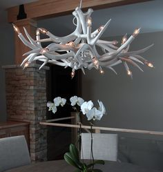 Chandelier - 12 Antlers (White) — Private Residence, Brookfield, Wisconsin. Image by Eroy Reyall