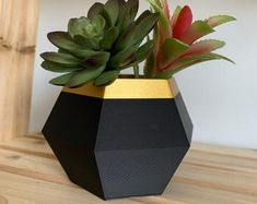 Indoor Flower Pots, Wood Plant Stand, Cement Pots, Modern Planters, Diy Door, Pottery Art, Geometric Shapes, Planter Pots, Paper Crafts
