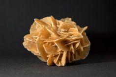 Mineral. Rosa del desierto del Sahara
