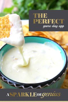 Queso blanco cheese dip recipe-Does it get any better than cheese, more cheese, jalepenos and green chilies? This easy queso blanco cheese dip recipe is the perfect appetizer. Cheese Dip Recipes, Gourmet Recipes, Mexican Food Recipes, Health Recipes, Mexican Dishes, Seafood Recipes, Recipies, Cheese Dip Mexican, Queso Blanco