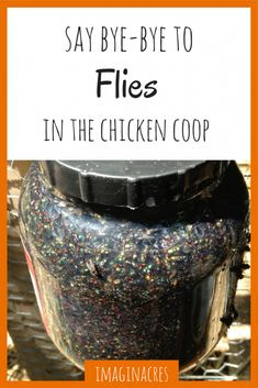 Building a Chicken Coop Do you have flies in your chicken coop? Weve found several ways to get rid of flies in the chicken coop for good! Building a chicken coop does not have to be tricky nor does it have to set you back a ton of scratch. Chicken Coup, Best Chicken Coop, Backyard Chicken Coops, Building A Chicken Coop, Chickens Backyard, Backyard Farming, Inside Chicken Coop, Greenhouse Farming, Small Chicken Coops