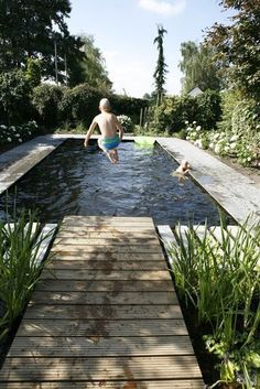 zwemvijver-basis-naturbad-wellness-schwimmbad-wonen-nl-basis-naturb/ - The world's most private search engine Swimming Pool Designs, Swimming Pools, Ideas De Piscina, Natural Swimming Ponds, Natural Garden, Cool Pools, Pool Landscaping, Water Garden, Garden Grass
