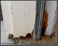 How to fix rotten wood around the house