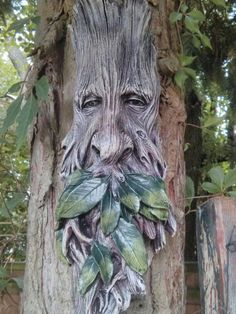 Wilhelm tree spirit carving on our tree in our garden is part of Weird trees - Art Sculpture En Bois, Driftwood Sculpture, Driftwood Art, Tree Carving, Wood Carving Art, Wood Carvings, Weird Trees, Tree People, Tree Faces