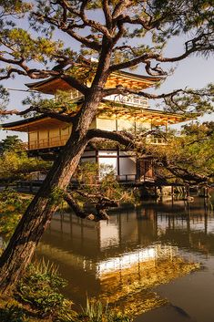 Kyoto in Japan is almost to good to be true - it must be a dream.