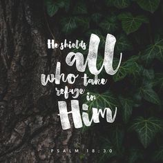 God's way is perfect. All the LORD's promises prove true. He is a shield for all who look to him for protection. Psalms 18:30