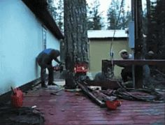 UNKNOWN WORLD HERO'S - THE BEST TREE CUTTER EVER! - AMAZING PRECISION CUT AND FALL BETWEEN 2 BUILDING! - WOW ACTION GIF