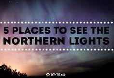 5 Places To See The NorthernLights  frontier.ac.uk | blog.frontiergap.com  #travel #adventure #explore #northernlights #auroraborealis #canada #sweden #finland #alaska #iceland