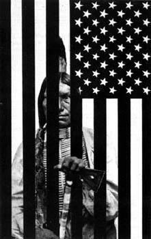 Native American Bars Flag