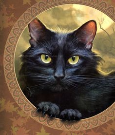 Black Cat Greeting Card // Black Cat Card // by JeffHaynieArt