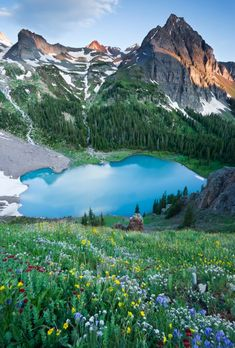 Composition Tips: Photographing Big Mountains. Blue Lakes Flowers - Grant Ordelheide
