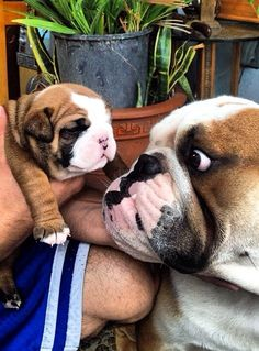 Are you sure im the daddy??? He doesn't look like me at all?!!