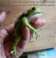 NEEDLE FELTING.........................PC....................Free Frog! Needle Felted by Bianca of Felted Friends.