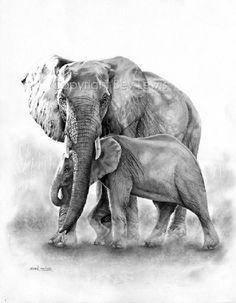 Animal drawings, animal paintings, elephant drawings, elephant paintings, a Elephant Sketch, Elephant Illustration, Elephant Art, Elephant Tattoos, African Elephant, Elephant Drawings, Pencil Drawings Of Animals, Animal Sketches, Elephas Maximus