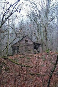 Forgotten Cabin In Virginia
