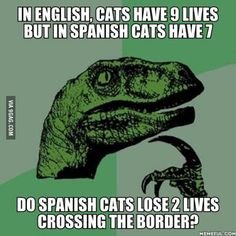 I think cats in other countries also are said to have 7 or even just 6