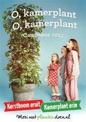 Bloemenbureau exporteert 'Kerstboom eruit, kamerplant erin'