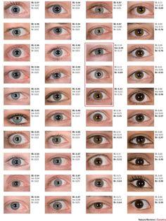 Habe welche ich augenfarbe Welche Augenfarbe