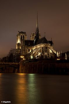 Cathédrale Notre-Dame de Paris - Île de la Cité, Paris, France