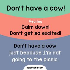Idiom of the day: Don't have a cow!  Meaning: Calm down! Don't get so excited!  Example: Don't have a cow just because I'm not going to the picnic.