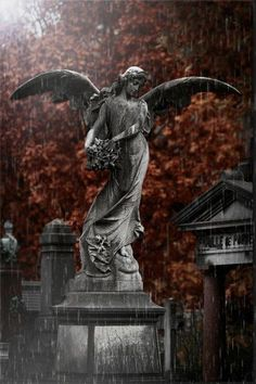 Friedhof Angel photos & pictures on fotocommunity- Friedhof Angel Fotos & Bilder auf fotocommunity Brown Cemetery Angels, Cemetery Statues, Cemetery Art, Statue Ange, Dragon Statue, Memes Arte, Old Cemeteries, Graveyards, Angel Art