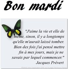 * Bonjour, des citations && Agréable semaine * Bon Mardi, Bonjour, Thinking About You, Let Down, Happy Wednesday, Love Life, Hapy Day, Quotes
