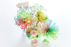 How to Make Rainbow Flowers - White flowers, split the stem and put each piece into water with food coloring.