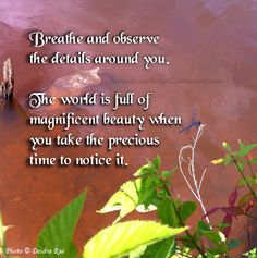 Beauty is based on your perception. You will see more beauty when you are looking for it with a positive attitude and an open mind.