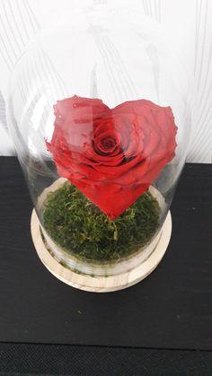 16 Meilleures Images Du Tableau Rose Eternelle Canning Et Bricolage