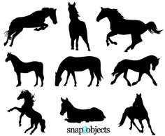 Free Horse Silhouettes Vector - AI SVG EPS - Free Graphics download