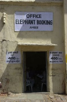To get to the Amber Palace, you can hire an elephant to go up the hill, Jaipur (my favorite citY, i THINK...)