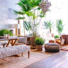 Garden Deco, Tropical Home Decor, Tropical Houses, Tropical Interior, Bohemian Interior, Tropical Furniture, Tropical Bedrooms, Interior Plants, Tropical Garden