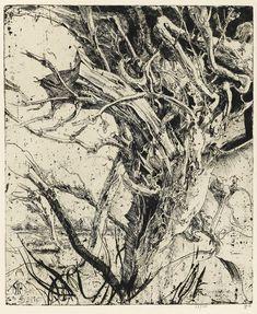 「デューラーの再来」と言われた天才線描家ホルスト・ヤンセンの驚異のデッサン力