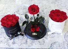 Valentine's Day Inspo �������� #flowerbox #beautyandthebeastrose #oneyearroses #preservedroses #marble #unicornroses #rosebox #flowerstagram #flowerdelivery #realrosesthatlastayear #elegant #luxurylifestyle #luxuryflowers #luxuryhomes #luxurylife #luxuryhome #luxurygift #luxurygifts #luxurious #rosesinbox #luxuryroses #occasion #homedecor #instagood #instadaily #makeupbox #makeupstorage #fashionblogger #beautyandthebeast #disney - posted by PEONIES & PETALS FLOWER BOX©…