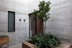 Galería de Antonio Solá / DCPP Arquitectos - 2