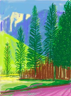 David Hockney: Untitled No. 12 from The Yosemite Suite, 2010