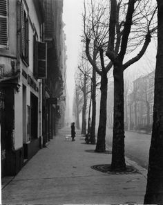 Avenue de Chatillon: by Louis Stettner