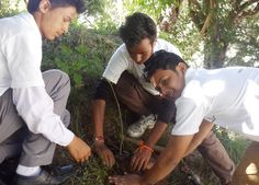 Working towards the noble cause, the team of Youth Services for Peace ngo organised a #tree plantation drive in Uttarakhand.