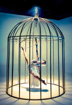 piscis-volans:    such a pretty bird in a cage?! never on my ship