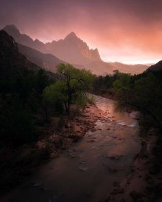 Zion National Park, Utah, USA.  Sean Ensch Images @sean_ensch_images