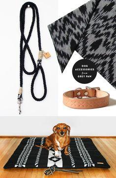 modern dog accessories - Google Search