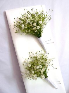 Boutonnieres of Baby's Breath! These boutonnieres are wildly charming as well as easy to make and as hardy as they come! These boutonnieres are a idea for DIY brides.