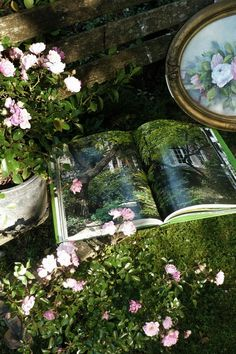 A lovely garden vignette with a favorite gardening book, a floral framed painting and a rustic moss covered bench!!! Bebe'!!! Lovely cottage garden setting!!!