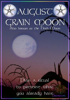 AUGUST – GRAIN MOON Also known as the Herb Moon Plan a ritual to preserve what you already have.