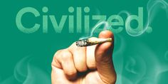 Inside the downfall of Civilized, the cannabis media startup - Business Insider