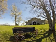 Wedding Reception Venue: Hidden View at Lee Family Farm - Sale Creek, TN     Cheron J. Douglas, CWP , Ashley O. Prescott, CWP   Certified...www.WithClassLLC.com